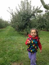 Apple-picking 1